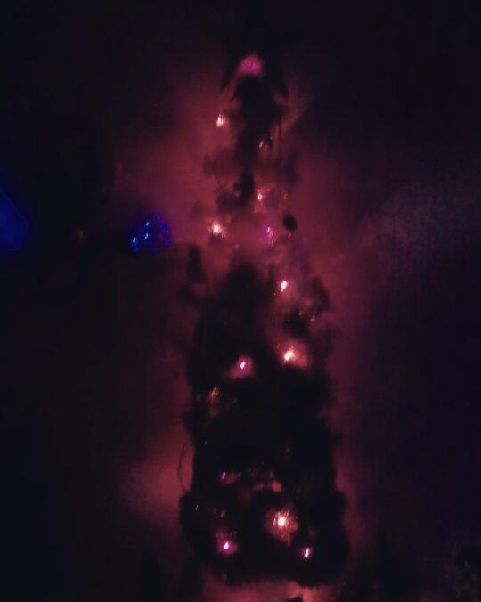 Árvore de natal #arboldenavidad #navidad #arbol #natal #navidad #navidades #me ...