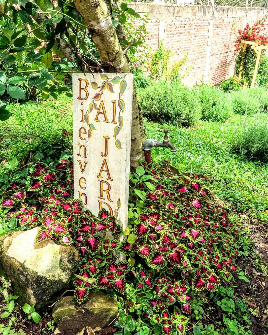 Bem-vindo ao nosso jardim! Bem-vindo ao nosso jardim! Crédito @nereidsrealm   ...