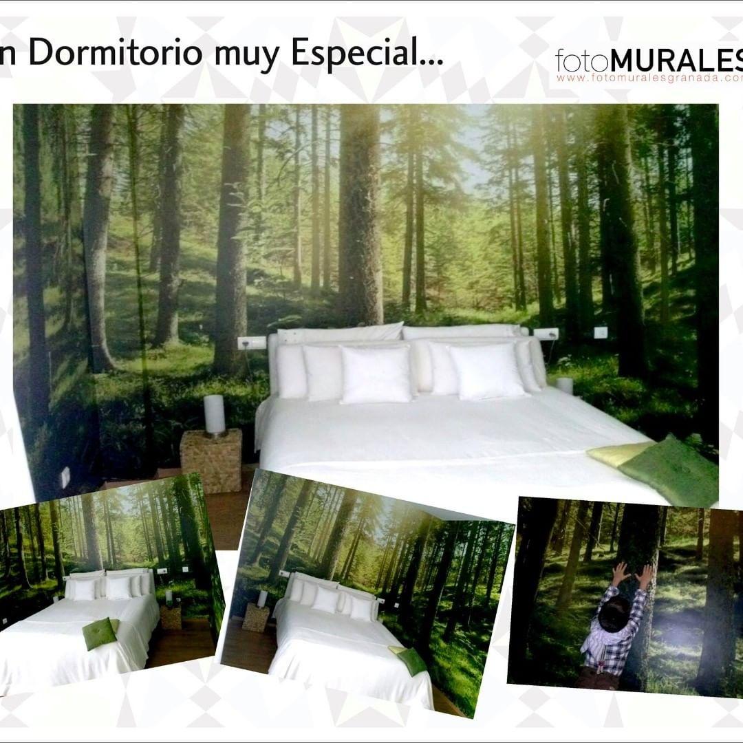 Este quarto estava dentro de uma clareira de uma floresta maravilhosa. Seu dono ...