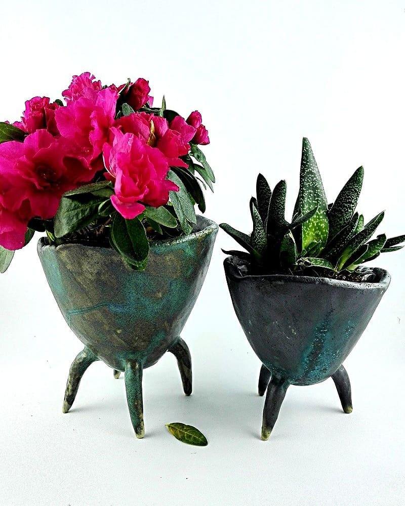 Você acha que pequeno é lindo? #flowerpress #flowerpot #personalblogger # ...