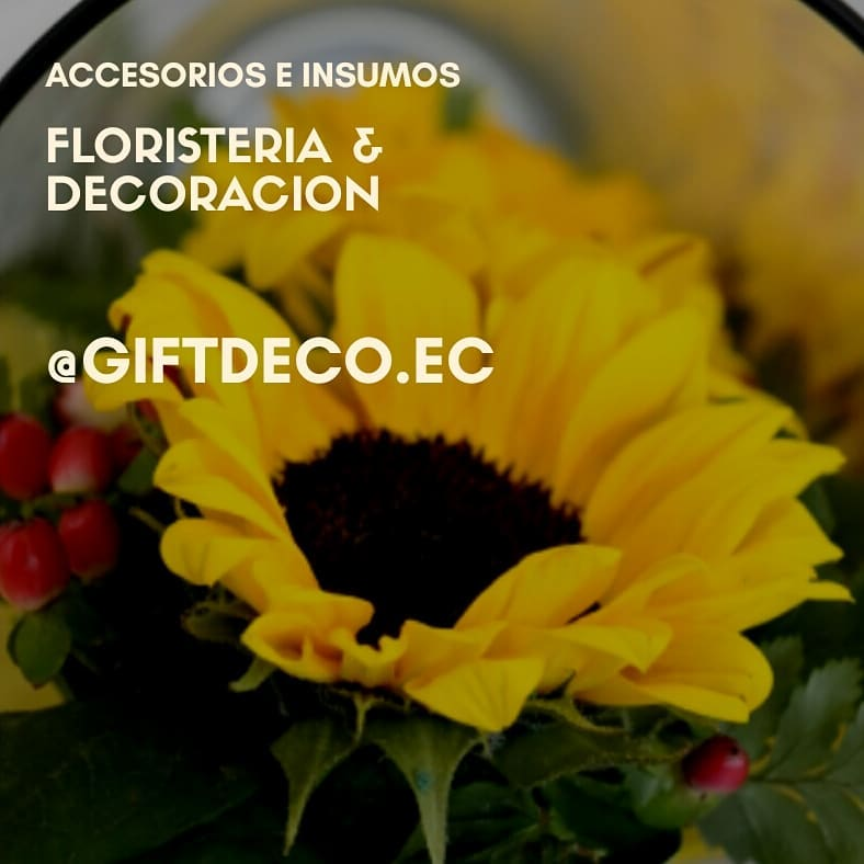 Nós vendemos #floral suprimentos #accessories de # decoration para #events #hogar. #oa ...