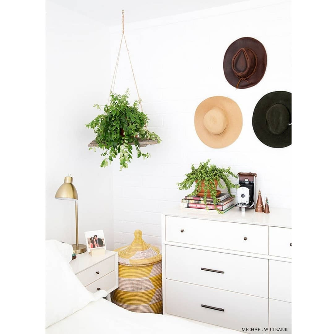 Talvez você já tenha ouvido falar que dormir com plantas no quarto é ruim ...
