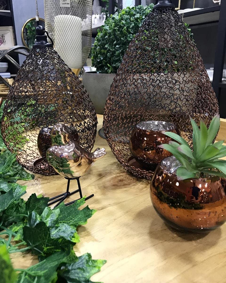 """""""Plantas são uma beleza extra para a sua casa""""  #plantas #decoracionhogar ..."""