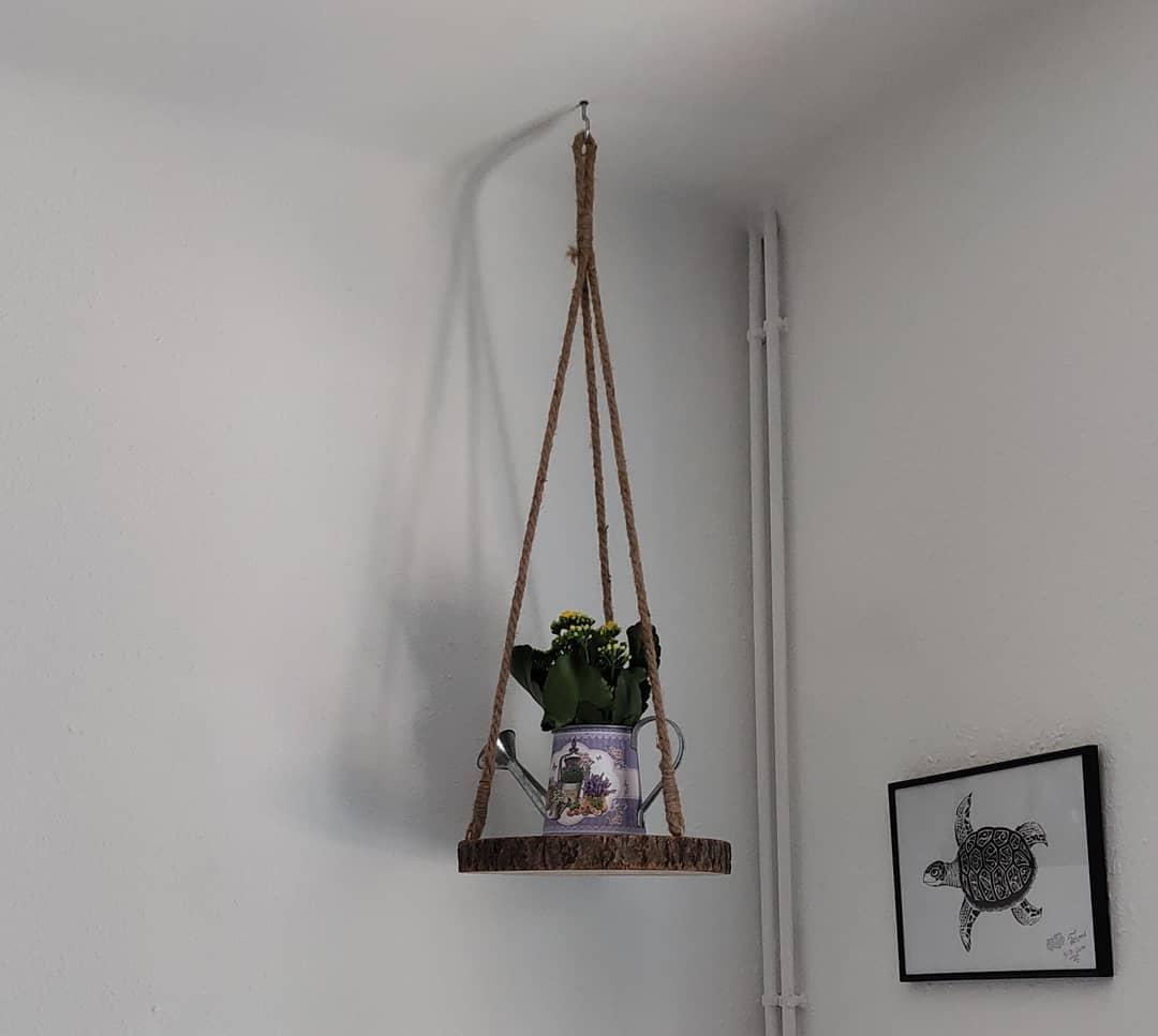Decorando a casinha :) # decoração #plantas # decoração de casa #hogardulcehome ...