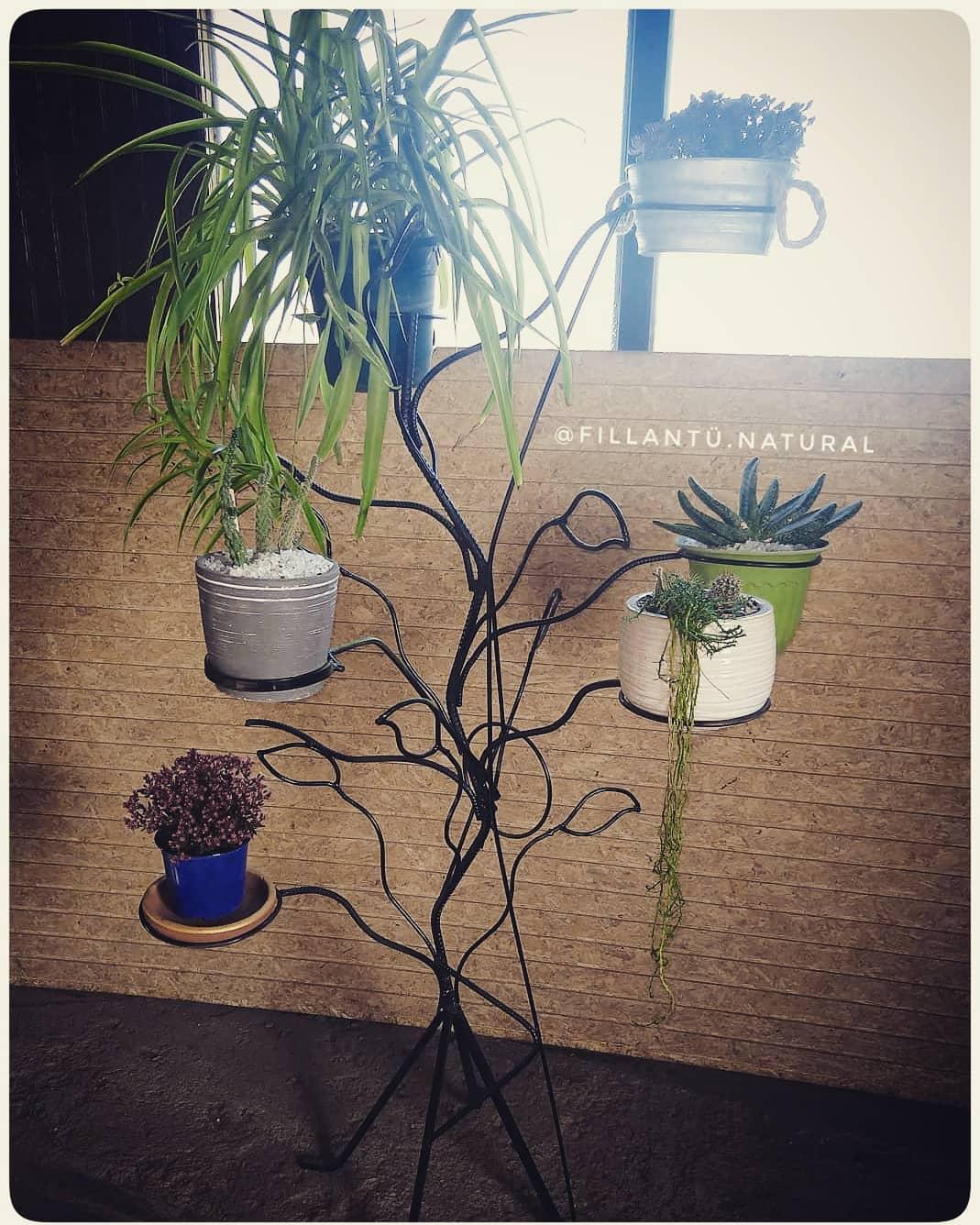 A árvore Fierro carrega plantadores! É vendido com ou sem plantas! #maceterosorigina ...